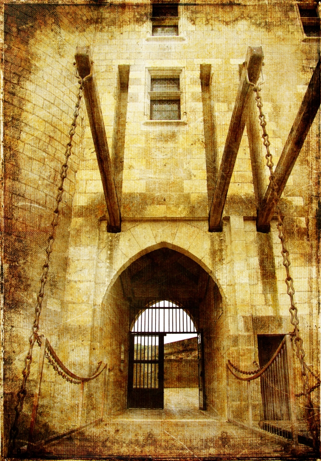 castle' entrance gate - picture in retro style
