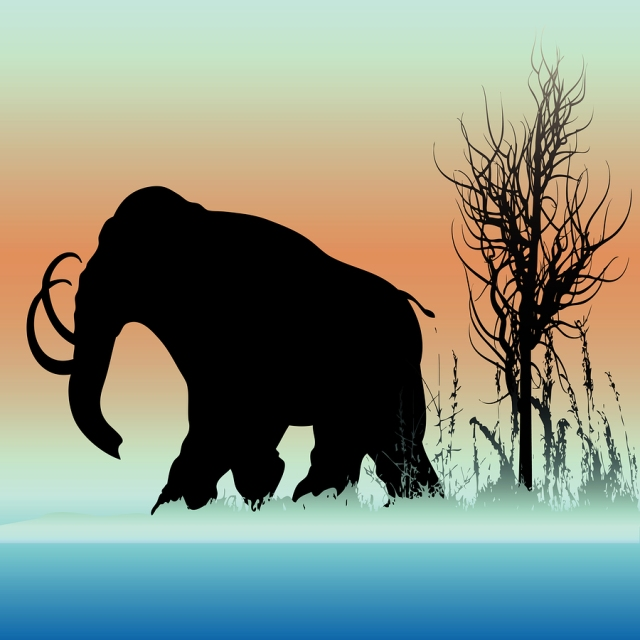 bigstock-Mammoth-Dawn-6138025
